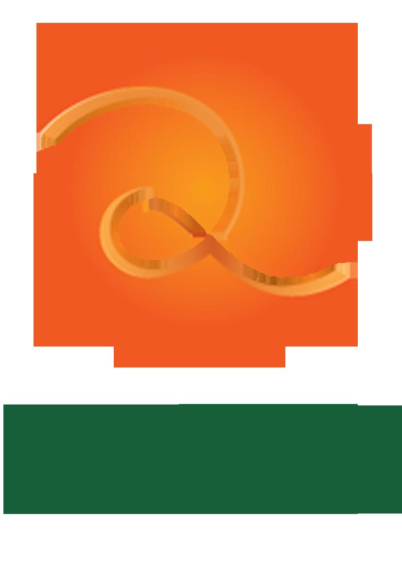 Logo Project Partner